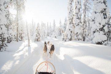 Lapland Jet Escapes